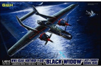 Northrop P-61B 'Black Widow' Last Shoot Down 1945